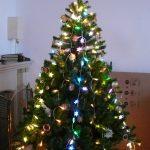 zber a odvoz vianočných stromčekov