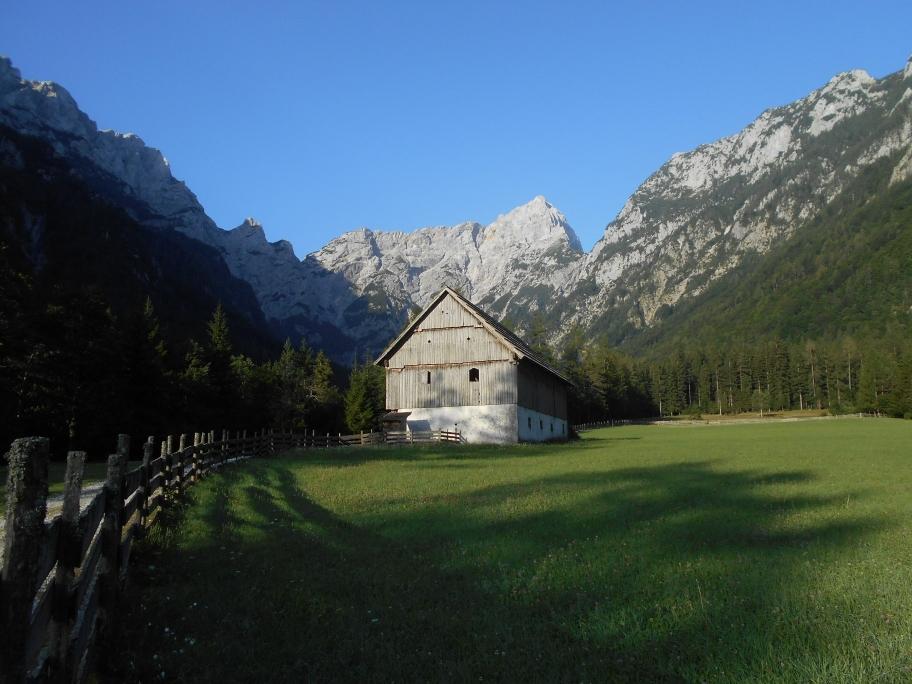 Alpami