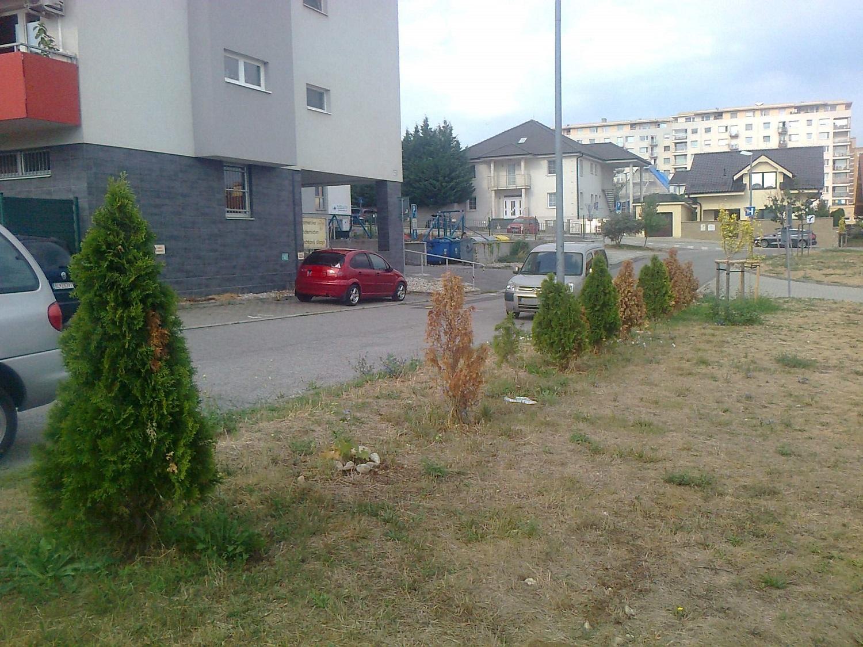 stromov